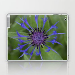 Thin blue flames in a sea of green Laptop & iPad Skin