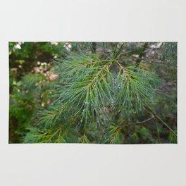 Dewy Pine Rug