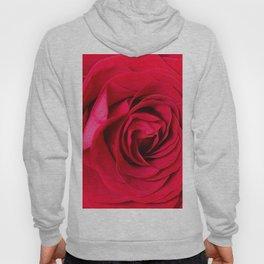 Red Rose Close-up #decor #society6 #buyart Hoody