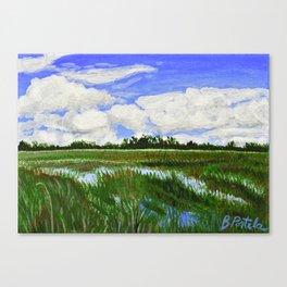 Shark Valley Landscape 1 Canvas Print