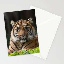 Look into my eyes by Teresa Thompson Stationery Cards
