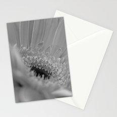 Gerbera Daisy B&W Stationery Cards