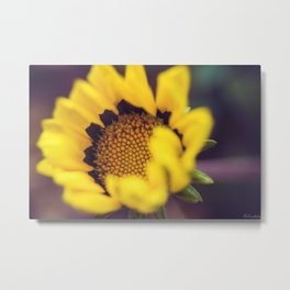 Summer in a sunflower - Floral Photography #Society6 Metal Print
