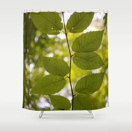 Up Up & Away Shower Curtain