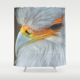 Feathers and eyelashes Shower Curtain