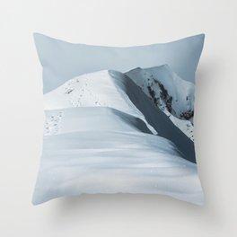 Comforter Throw Pillow