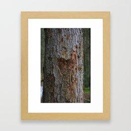 Heart in Bark Framed Art Print