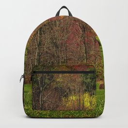 Lonely Bails of Color Backpack