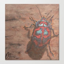 Stink Bug 2 Canvas Print