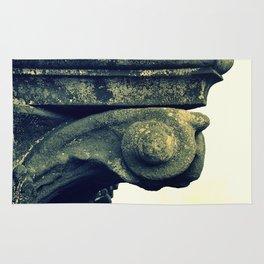 Timeworn Capital Rug