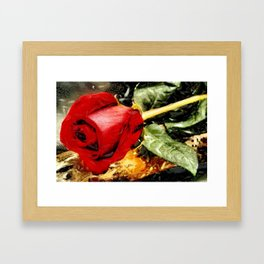 Art A Rose Is A Rose © Framed Art Print
