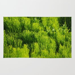 Greenness Rug