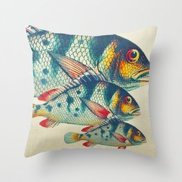 Fish Classic Designs 3 Throw Pillow