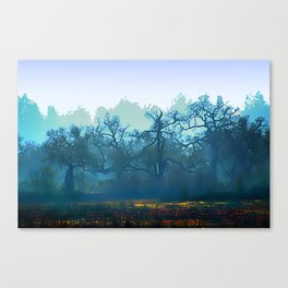 Skragley Oak Trees in the Laguna de Santa Rosa, Sonoma County, California Canvas Print