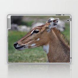 Persian Gazelle Laptop & iPad Skin