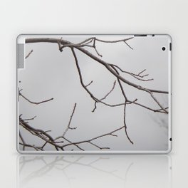 Cold Grey Sky Behind Leafless Tree Branches Laptop & iPad Skin