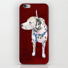 Dalmatian iPhone Skin