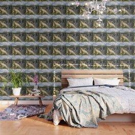 Beautiful wild waterfall Wallpaper