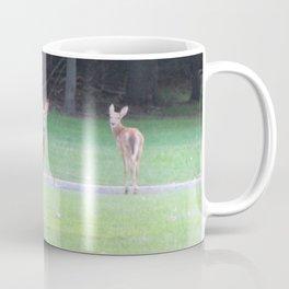 Metro Parks Coffee Mug