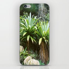 'Dragon Tree' Forest iPhone Skin