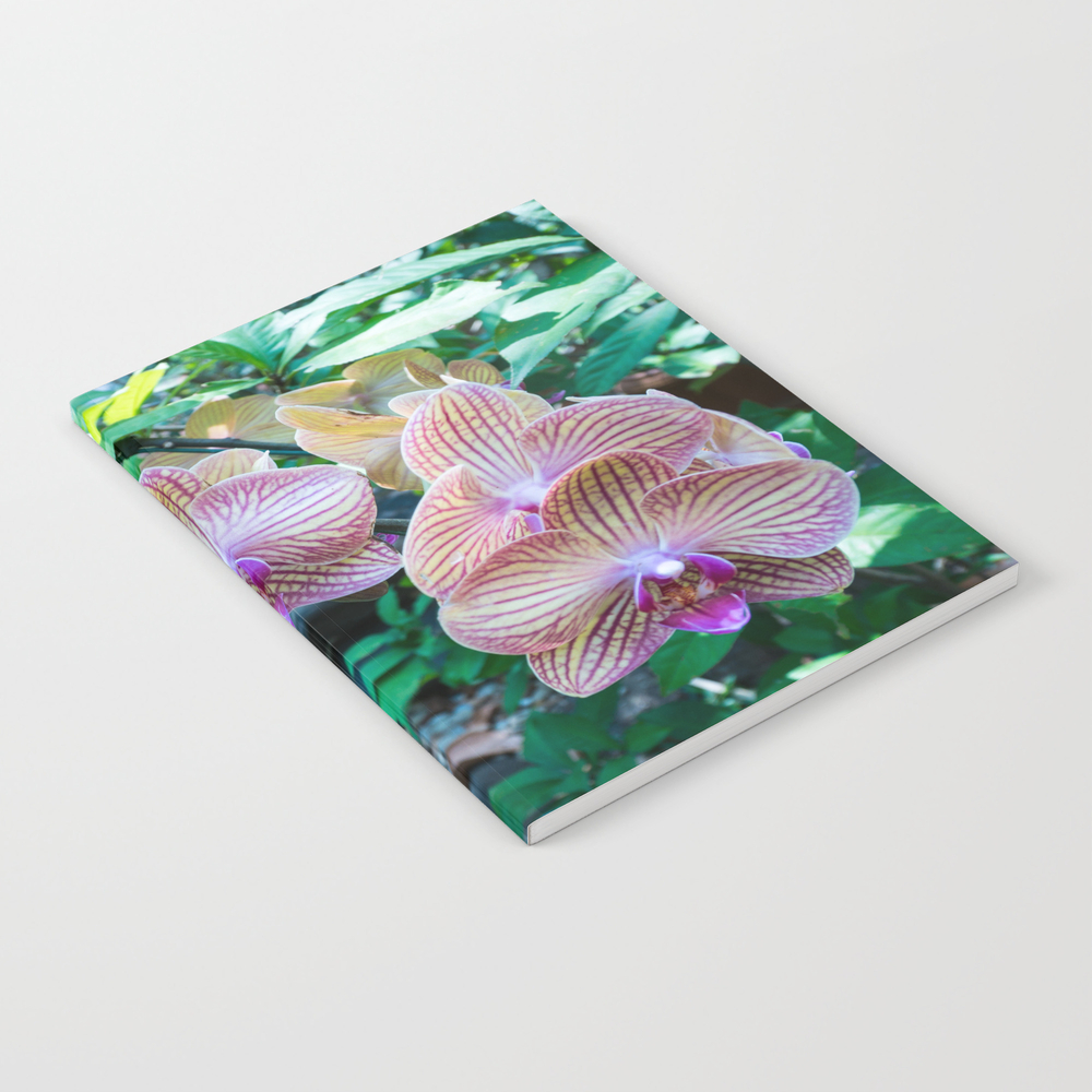 Thai Orchids Journal by Rosscampbell NBK9134840