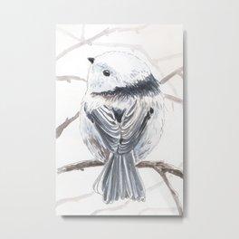 Tit bird Metal Print