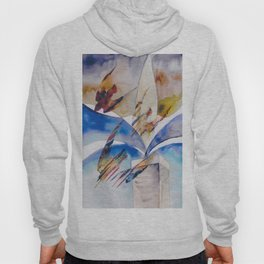 Diving Swifts Hoody