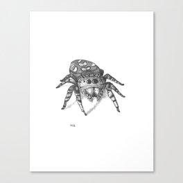 Inktober 2016: Jumping Spider Canvas Print