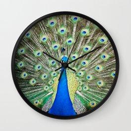 """Charmer"" the peacock Wall Clock"