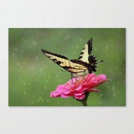 Bokehs and Butterflies Canvas Print