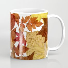 Autumn / Fall copper & gold leaves in English park - Oak, Beech Coffee Mug