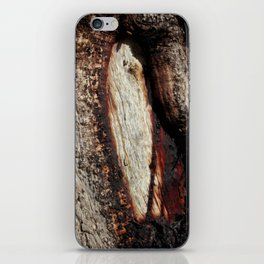 Aboriginal scarred Tree iPhone Skin