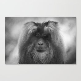 I'm Watching You Too! Canvas Print