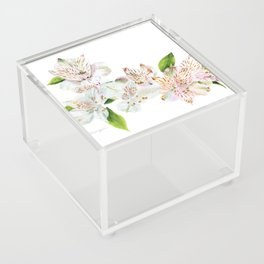 Spring is in the Air Acrylic Box