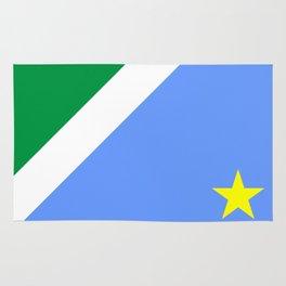 Mato Grosso do Sul flag Brazil Rug