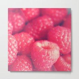 raspberries. les framboises Metal Print