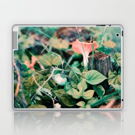 Fairy Vegetable Garden Laptop & iPad Skin