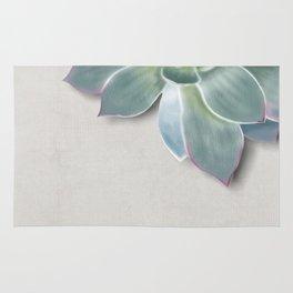 Succulent botanic print grey Rug