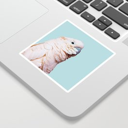 Parrot Photography | Pink Bird |  Tropical | Exotic | Turquoise Art | Blush Pink Sticker
