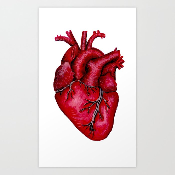 Anatomical Heart Painting Red Art Print By Lisska Society6