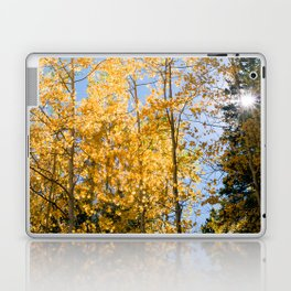 Aspen Forest Laptop & iPad Skin