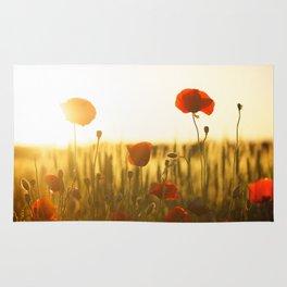 Sunset tulipe Rug