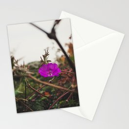 Lonely flower of Naszály mountain Stationery Cards