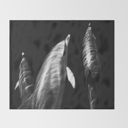 Black and white dolphins Throw Blanket