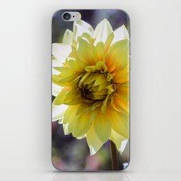 Dahlia In The Garden / 30 iPhone Skin