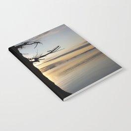 Shadow tree at dawn - Khövsgöl Mongolia Notebook