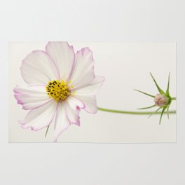 Sensation Cosmos White and Pink Rug