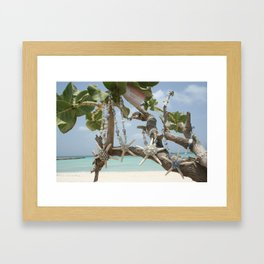 """Be A Star!"" Family in Aruba Framed Art Print"