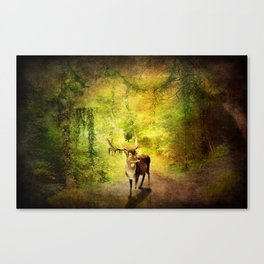 Stagg Canvas Print