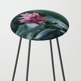 Tropical Pink Counter Stool